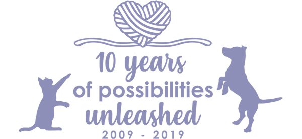 10 years of possibilities unleashed
