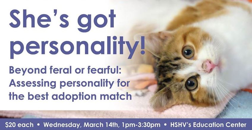 She's got personality! Cat behavior workshop