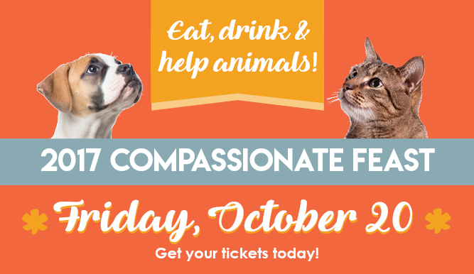 Compassionate Feast - Tickets available